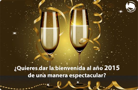año nuevo 2015