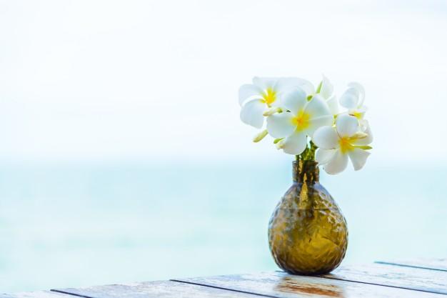 jazmin-mar-playa-de-boda-de-primavera_1203-4038